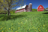 Vermont farm in the spring