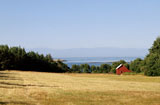 Farmland in Washington's Puget Sound